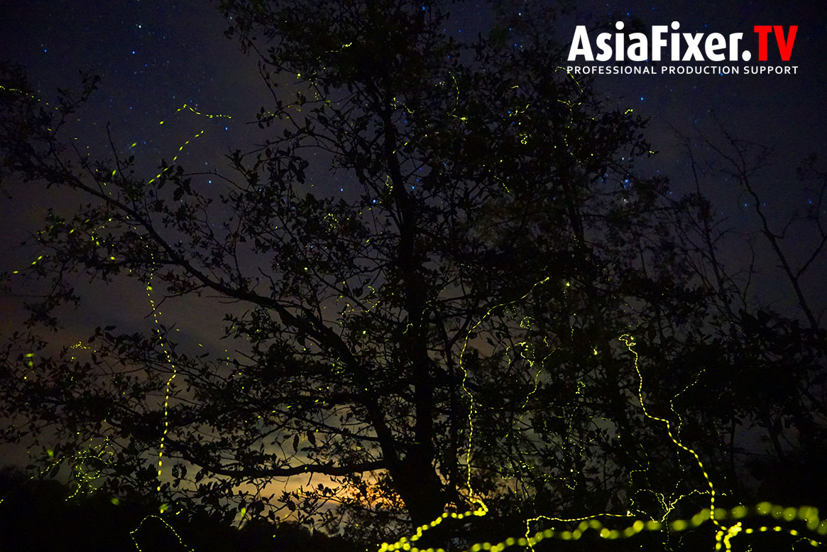 Asia Film Location Fixer, Natural History filming, documentary